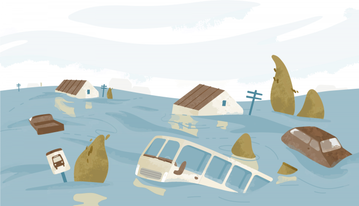 Pericol, inundație