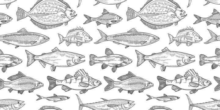 Acvariul cu pești
