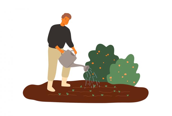 Fertilitatea solului