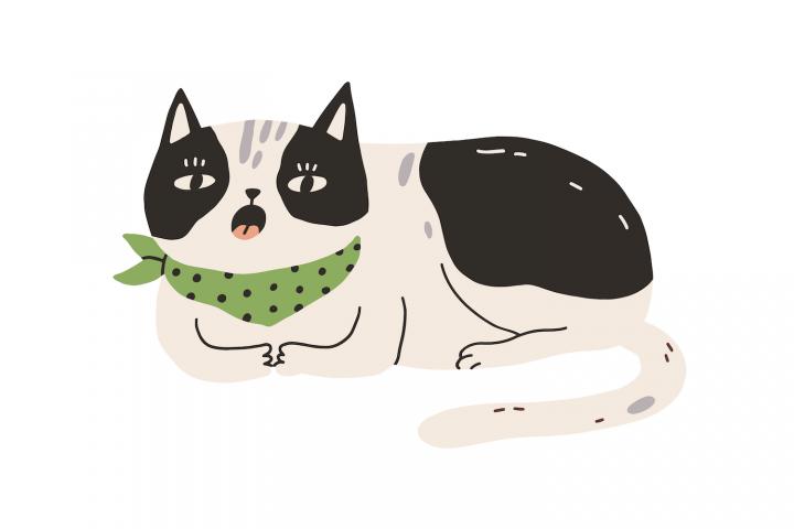 Pisică plictisită